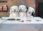 Как отучить собаку есть со стола