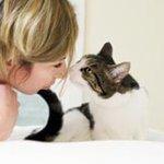 О том, как подружились человек и кошка...