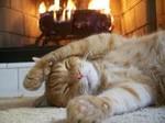 кошка у камина